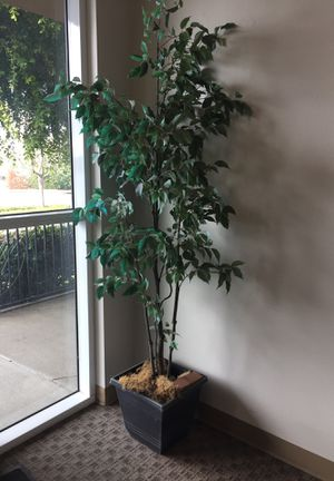 Take plant (fake) for Sale in West Covina, CA