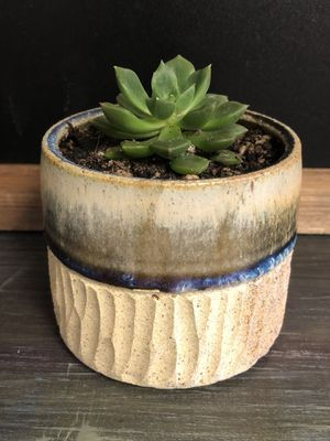 Handmade pot with succulent for Sale in Colorado Springs, CO
