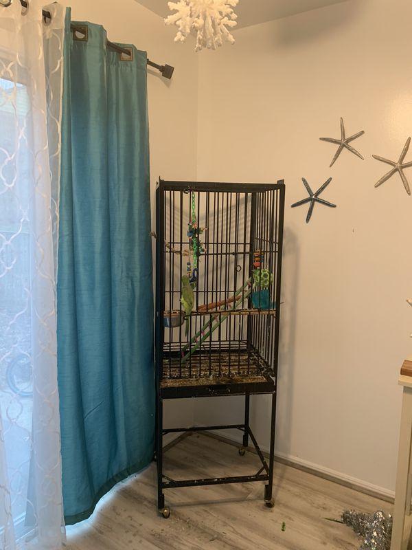Bird cage not bird for sale
