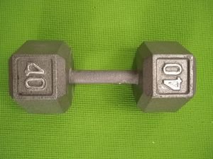 One 40lbs dumbbell for Sale in Troy, MI