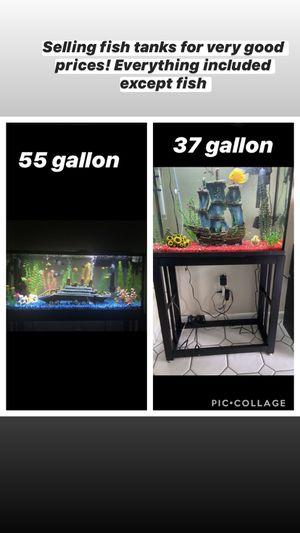 55 and 37 Gallon Fish Tanks for Sale in Miami, FL