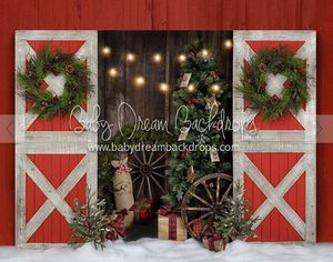 Christmas session for Sale in Algonquin, IL