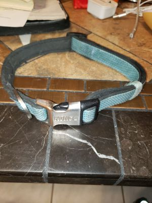 Kong dog collar large for Sale in Frankfort, IL