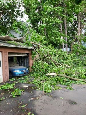 **FREE OAK WOOD** for Sale in New Britain, CT