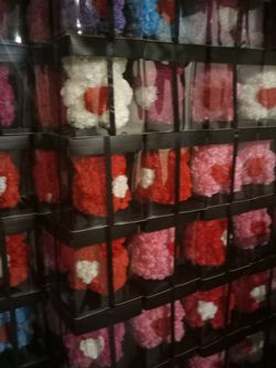 Rose Bear With Lights for Sale in Dallas,  TX