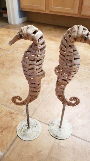 seahorses for Sale in Las Vegas, NV