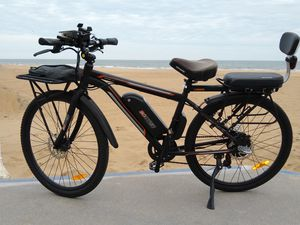 Electric Bike - 20mph, 2 seats, rack, warranty for Sale in Virginia Beach, VA