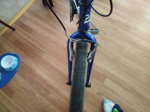 Trek Millenia Adult bike