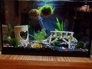Fish tanks! for Sale in Nashville, TN