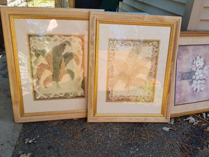 Pictures for Sale in Zimmerman, MN