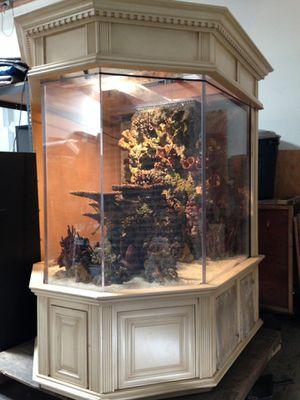 Beautiful1000 gallon acrylic fish tank reef system, saltwater fish tank. for Sale in Long Beach, CA
