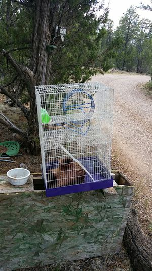 Cage for Sale in Overgaard, AZ