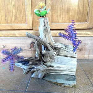 Driftwood for Fish Tank Aquarium for Sale in New Port Richey, FL