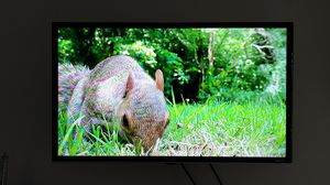 """TCL Roku TV 32"""" for Sale in Durham, NC"""