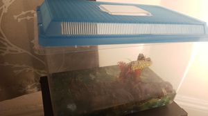 Fish tank for Sale in Brooklyn, NY