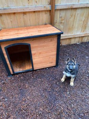 Dog house for Sale in Vancouver, WA