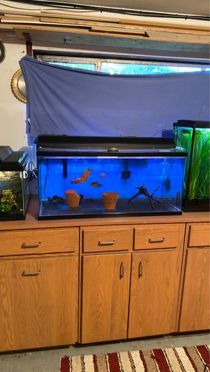 55 gallon fish tank for Sale in Burien, WA