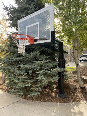 Pro Dunk Hoop for Sale in Centennial, CO