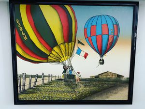 H Hananove Hot Air Balloon framed art for Sale in Port St. Lucie, FL