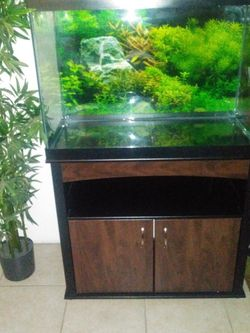 65 Gallon Fish Tank And Stand for Sale in Anaheim,  CA