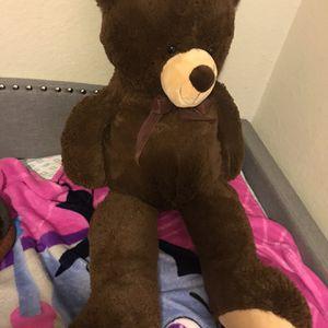 Bear for Sale in Houston, TX
