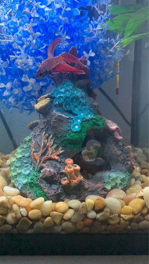 Small coral tank decor for Sale in Denver, CO