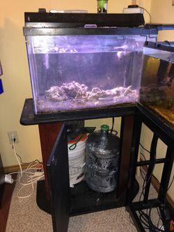 Aquarium for Sale in San Angelo,  TX