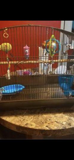 Bird Items for Sale in Arlington,  TX