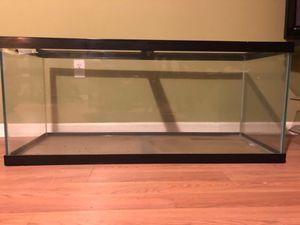 75 Gallon Aquarium for Sale in Bath, NY
