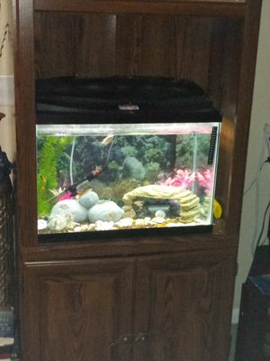 30gallon aquarium everything included for Sale in Gahanna, OH
