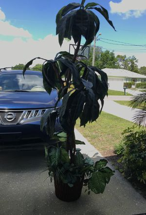 Large fake plant decor for Sale in Poinciana, FL