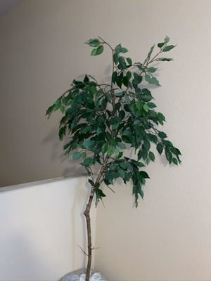 Fake tree / artificial plant for Sale in Las Vegas, NV
