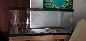 75 gallon aquarium for Sale in Tacoma, WA