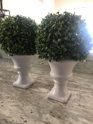 """Topiary 15"""" tall for Sale in San Diego, CA"""