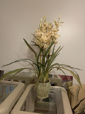 Large Fake Orchid Plant for Sale in Azalea Park, FL