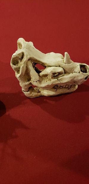 Aquarium Animal Skull decor 6.5 W x 4.5 H for Sale in Findlay, OH
