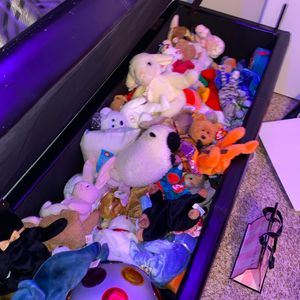 Beanie Babies for Sale in Severna Park, MD