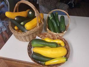 Zucchini for Sale in Tacoma, WA