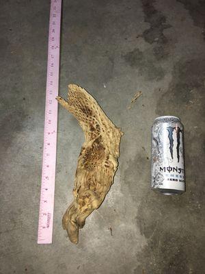 Cholla wood, teddy bear cactus for Sale in Henderson, NV