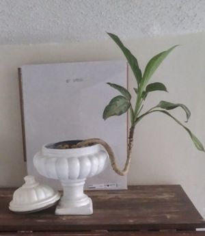 Home Decor ceramic urn planter for living room dining room bedroom and office (sorry plant isn't included) for Sale in Miami, FL