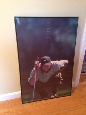 Tiger Woods Professionally framed print for Sale in Acton, MA