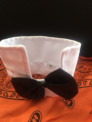 Collar tie for dog or cat for Sale in Hanover, MD
