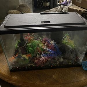 Fish Tank for Sale in Wildomar, CA