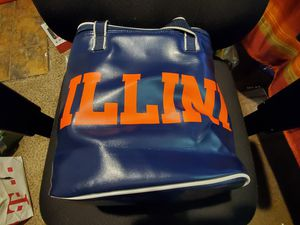 ILLINI Seat Cushion and Cooler $30 OBO for Sale in St. Louis, MO