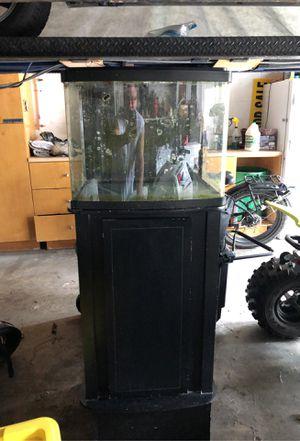 Aquarium 30 gallon bio cube for Sale in FL, US