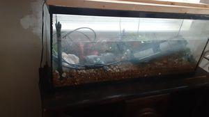 55 gallon aquarium with stand for Sale in Avon Park, FL