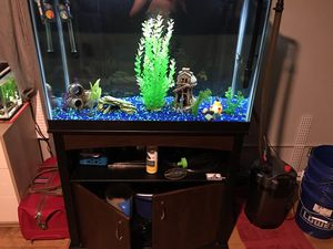 Fish aquarium tank 65 g for Sale in Austin, TX