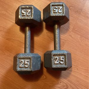 25 Dumbbell for Sale in Renton, WA