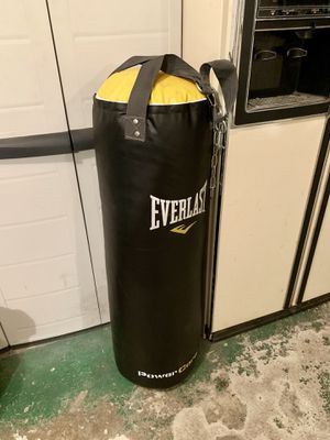 Punching bag for Sale in Hudson, FL