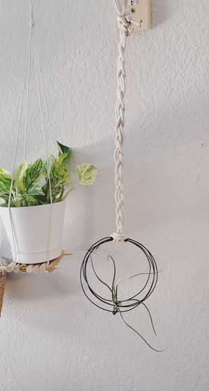 Plant holders and air plant holder decor for Sale in Dallas, TX